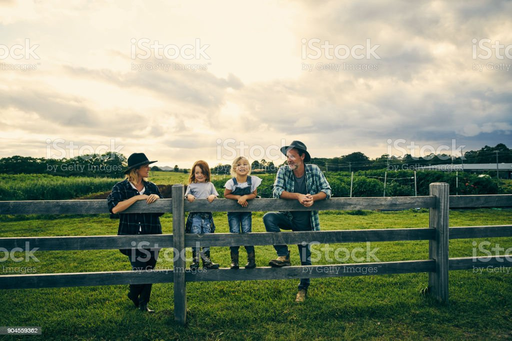 Their little family of four on the farm stock photo