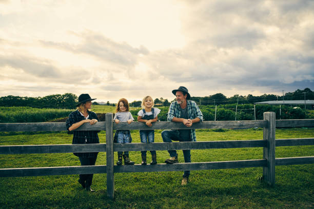 their little family of four on the farm - farm stock pictures, royalty-free photos & images