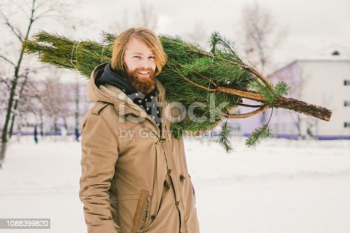 Theme is the symbol of Christmas and New Year holidays. A handsome young Caucasian man with a beard carries a Christmas tree on his shoulder. Purchase and delivery of conifer on Christmas Eve.