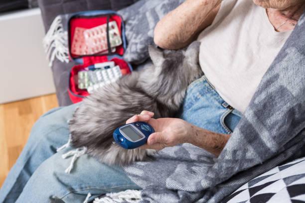 thema alter mann und diabetes. nahaufnahme einer hand. senior kaukasischen frau zu hause auf der couch misst mit einem medizinischen gerät mit glucometer niveau der glukose im blut. in den händen von apet katze - hypoglykämie stock-fotos und bilder