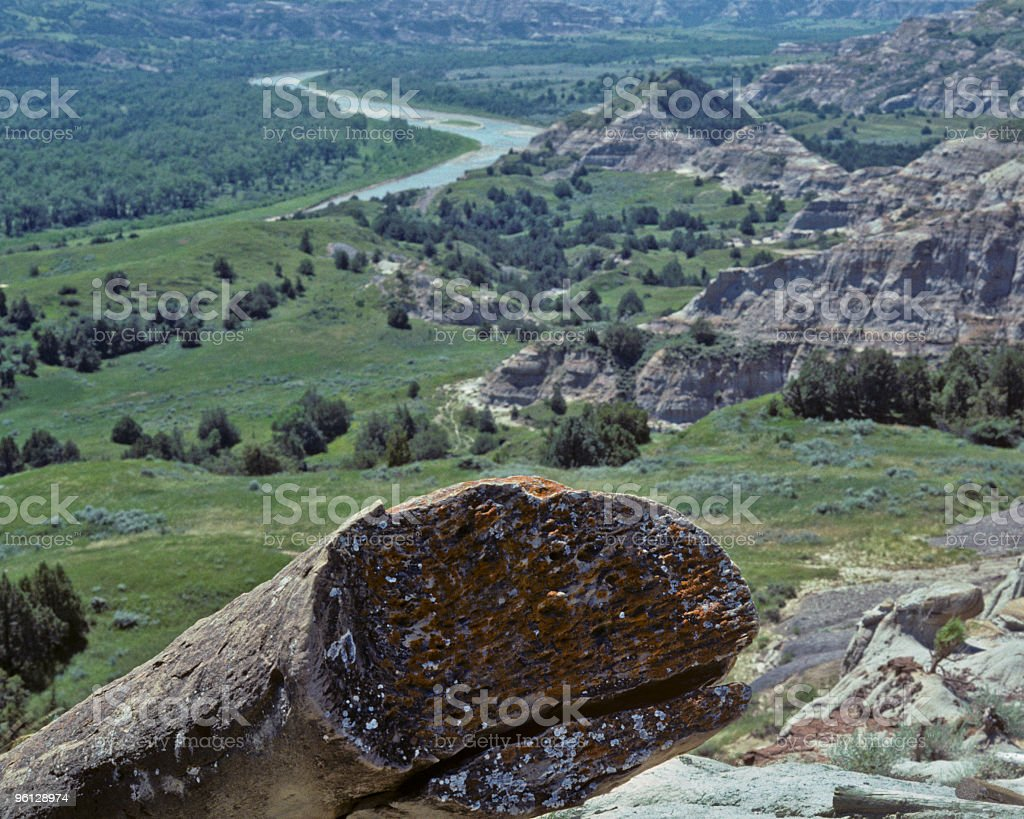 Petrified Log and the Little Missouri River royalty-free stock photo