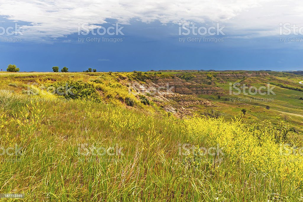Theodore Roosevelt National Park Views royalty-free stock photo