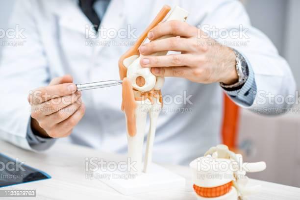 Therapeutin Zeigt Kniegelenkmodell Stockfoto und mehr Bilder von Arzt