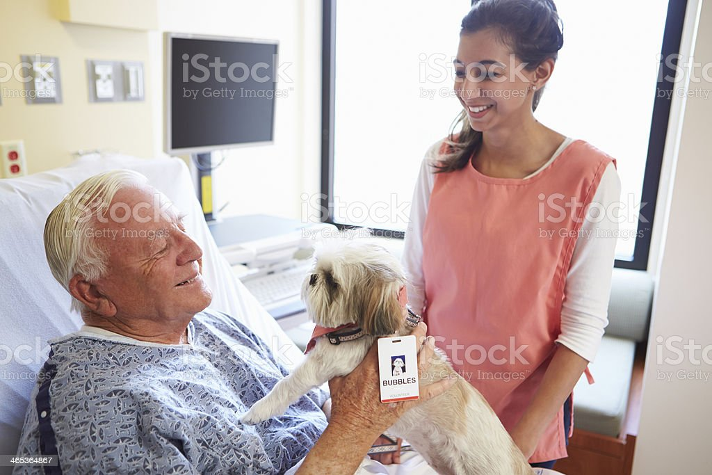 Therapy dog and aide visit senior male patient in hospital stock photo