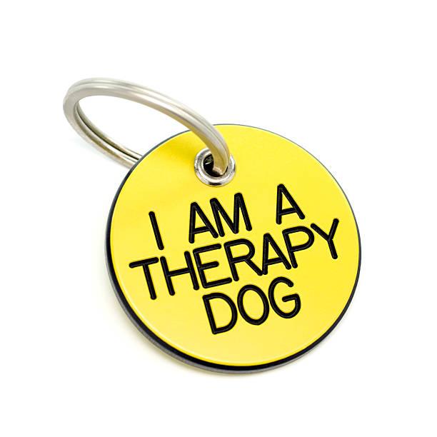 therapie-erkennungsmarke - halsband stock-fotos und bilder