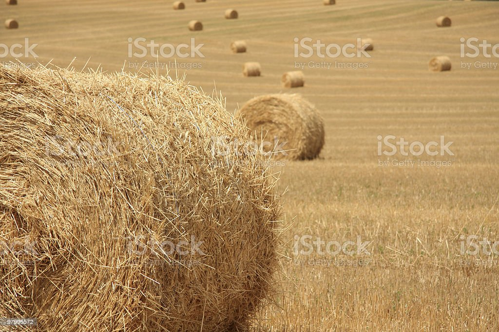 Hay Bales royalty free stockfoto