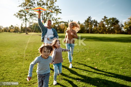 istock There are no words to describe how special kids are. Happy family playing a kite. Outdoor family weekend 1215576968