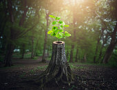 istock There is hope 1223028041