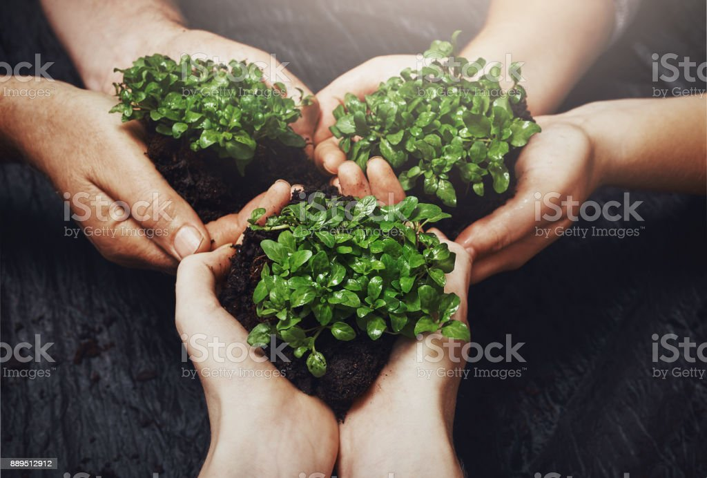 There's always room to grow stock photo