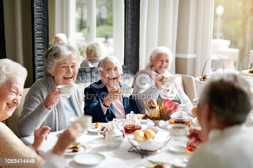 Cropped shot of a group of seniors having tea in their retirement home