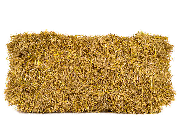 hay hay isolated on a white background hay stock pictures, royalty-free photos & images