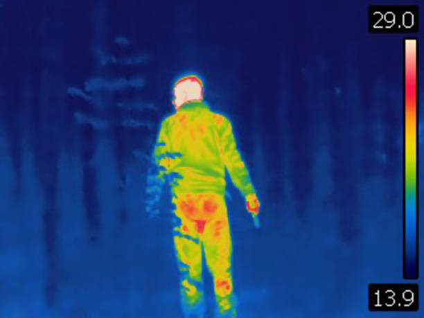 Thermal image of man sneaking in the woods. Rear view. stock photo