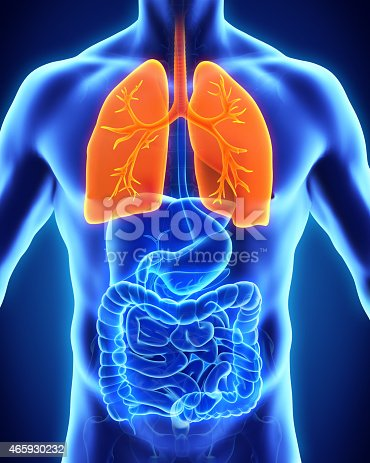 istock Thermal image of the human respiratory system 465930232