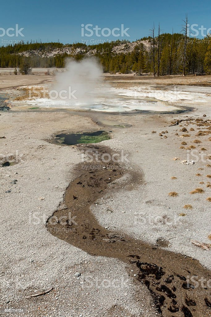 Thermal runoff near Minute Geyser at Norris Geyser Basin. royalty-free stock photo