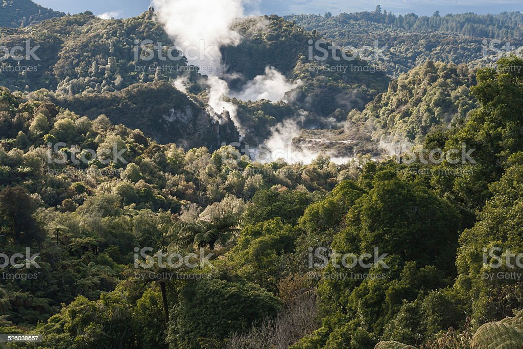 thermal valley in Rotorua stock photo