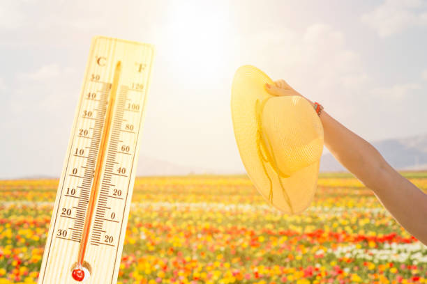 thermometer in the sky, the heat. woman's hand holding straw hat, summer concept stock photo