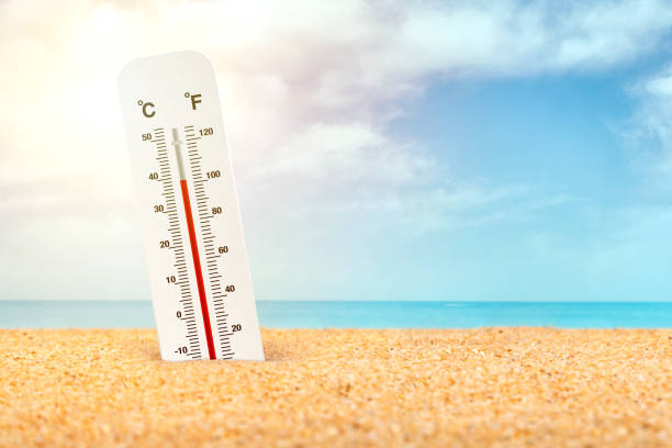 Thermometer standing in the sand at the beach in very hot weather stock photo