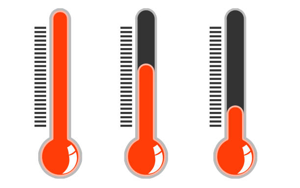 What Is the Ideal Reefer Temperature for Fruits and Vegetables?