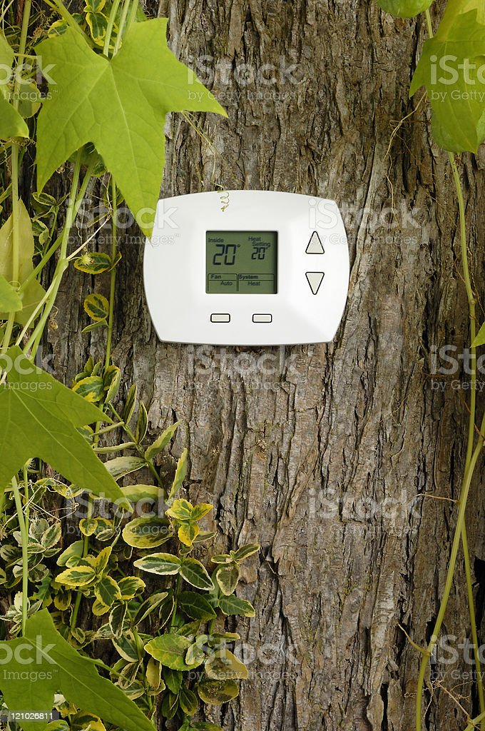 Thermostat on tree, heating temperature in Celsius royalty-free stock photo