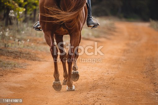 Cropped shot of a woman riding a horse on a farm