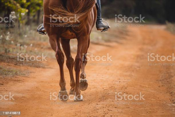 These hooves were made for trotting picture id1161416613?b=1&k=6&m=1161416613&s=612x612&h=yz4hrsmyrafm zdmgrrfyumg58bjzaolbojmbhxhm y=