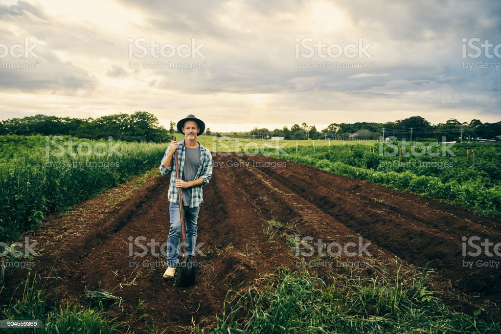 These lands need to be tended stock photo