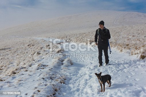 istock They are together all the time 1078962646