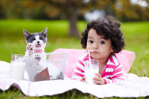 Adorable little girl drinking milk through a straw while lying on the grass next to her kitten