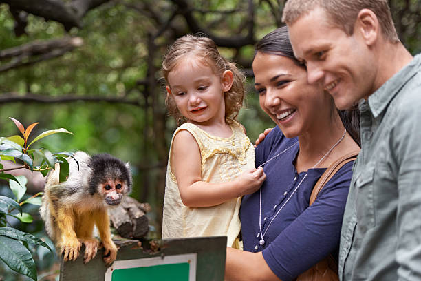 They finally understood the theory of evolution.... A happy family spending the day at a monkey sanctuary wildlife reserve stock pictures, royalty-free photos & images