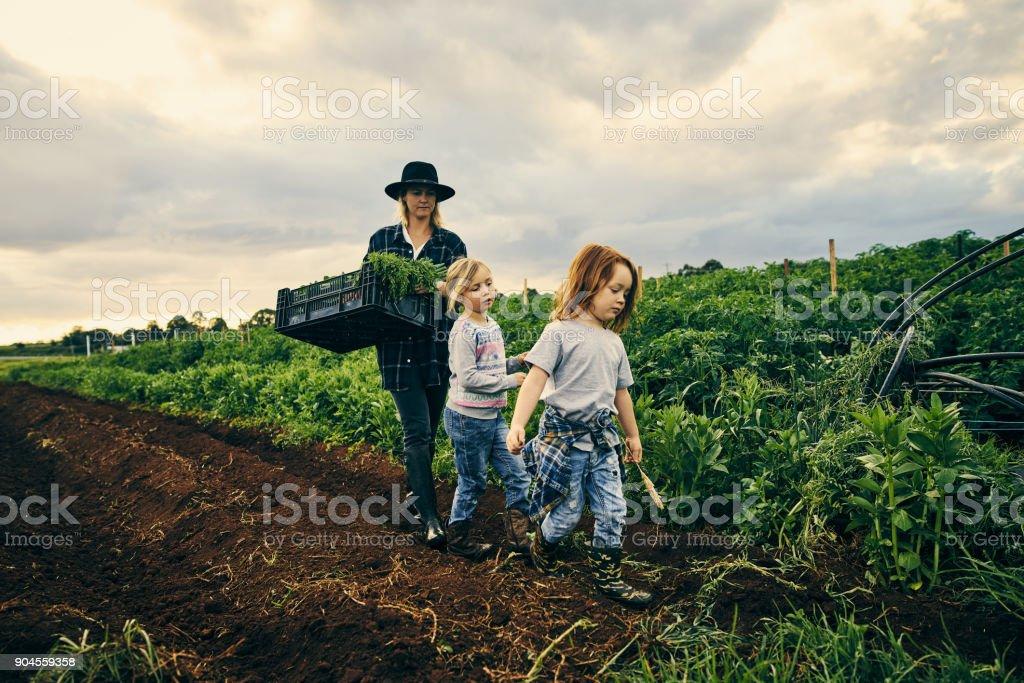 Sie gehen dorthin, wo Mama geht – Foto