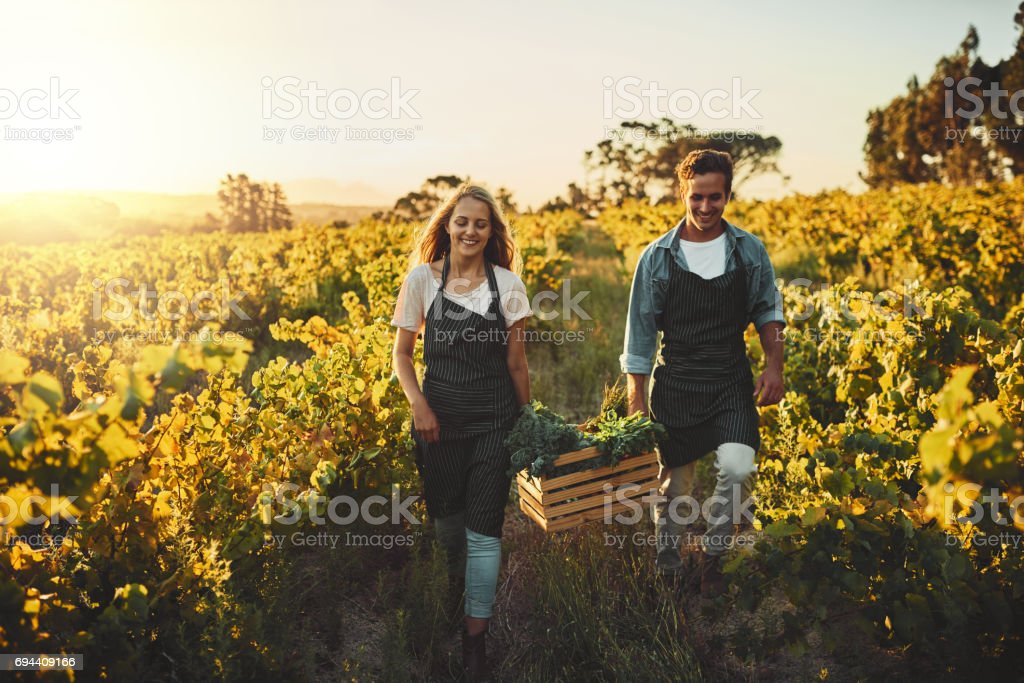 They grow their own stock photo
