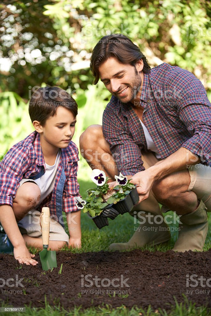 They love gardening together stock photo