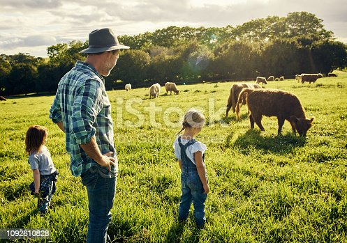 Shot of a father and his two little children watching over cattle on a farm