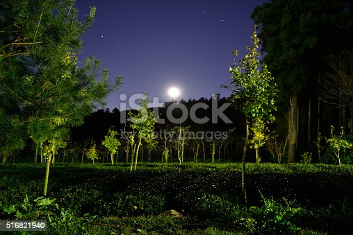 483422527istockphoto They went to a lonely place in the mountains 516821940