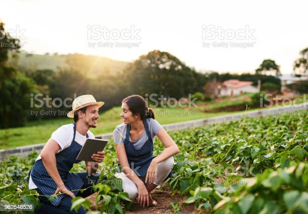 Foto de Eles Trabalham Nesta Fazenda Juntos e mais fotos de stock de Adulto