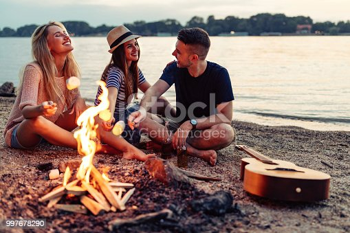 Shot of a group of cheerful young friends holding up marshmallows on sticks over a fire by the river