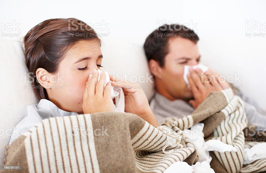 They're not taking winter too well royalty-free stock photo