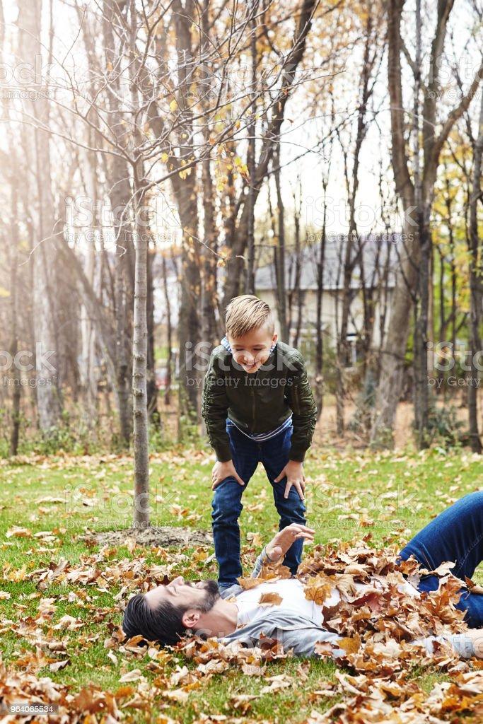 彼らは秋に恋に落ちたんです。 - 2人のロイヤリティフリーストックフォト