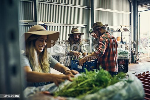 Shot of a group of farmers packing freshly harvested herbs in their warehouse