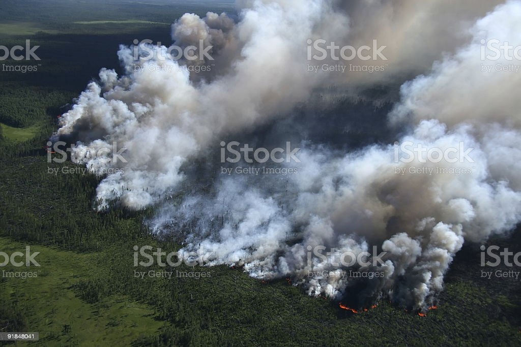 Thick cloud of smoke over a forest on fire stock photo