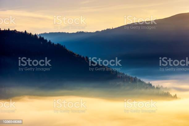 Photo of thick fog above the valley at sunrise