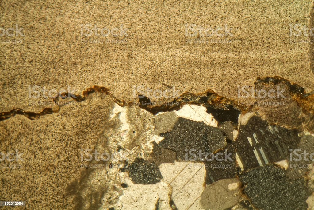 Thin section of triassic limestone under the microscope stock photo