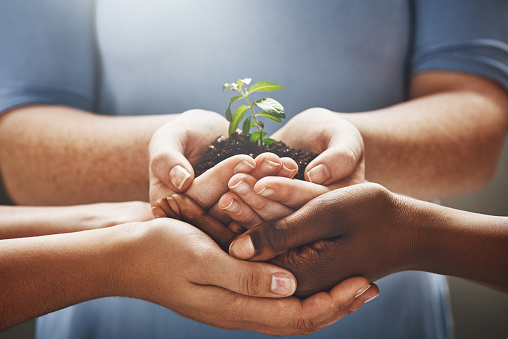 istock Things grow when you nurture it together 883034418