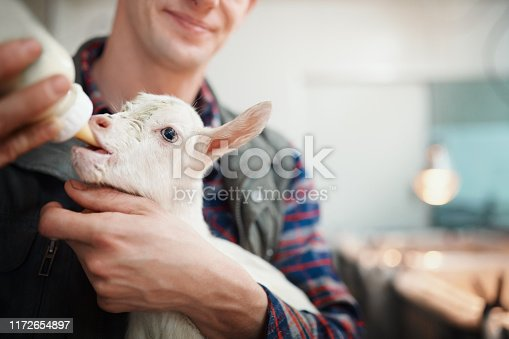 Shot of a young man feeding a baby goat bottled milk at a dairy farm