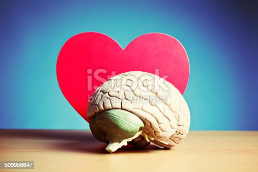 istock I think I'm in love! Model brain and heart 509958647
