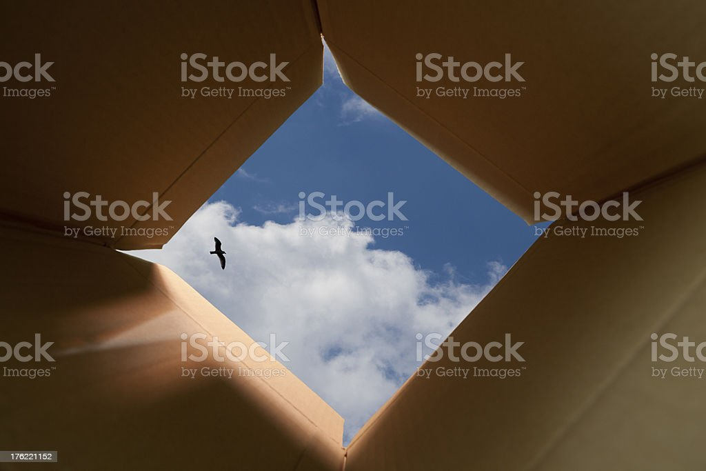 Think Outside The Box Concept stock photo