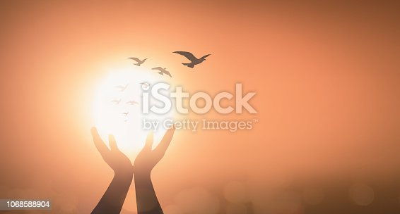 Silhouette prayer hand blessing God on blurred candle light with bird flying background