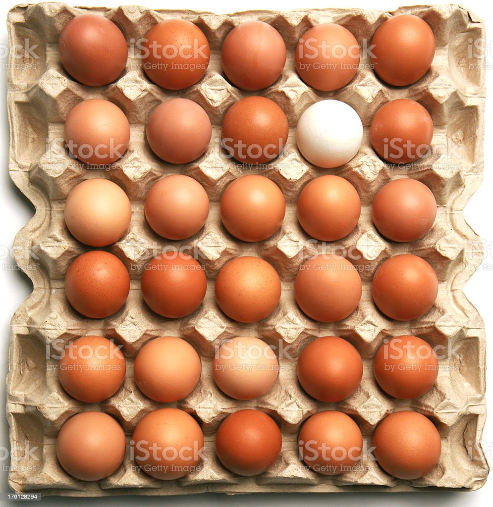 Thirty eggs royalty-free stock photo