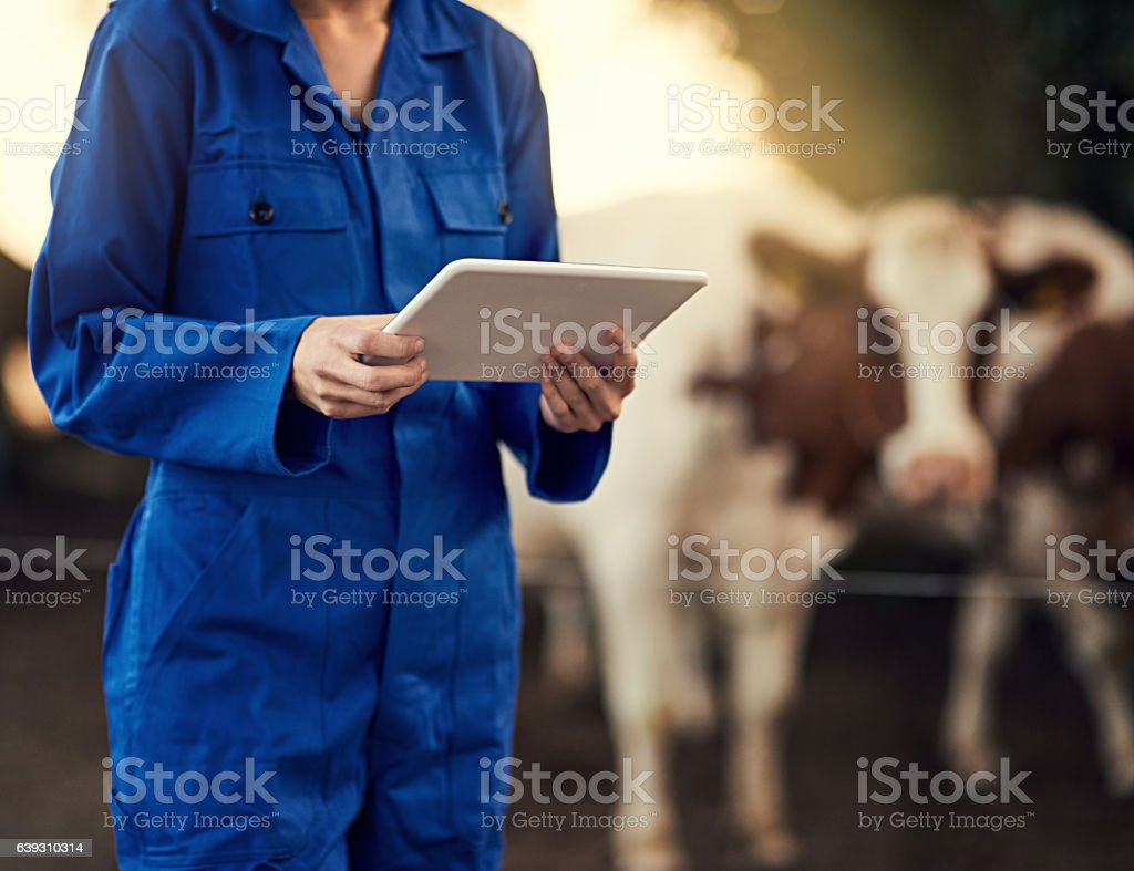 Diese Rinderzähler-App ist wirklich nützlich - Lizenzfrei Digital generiert Stock-Foto