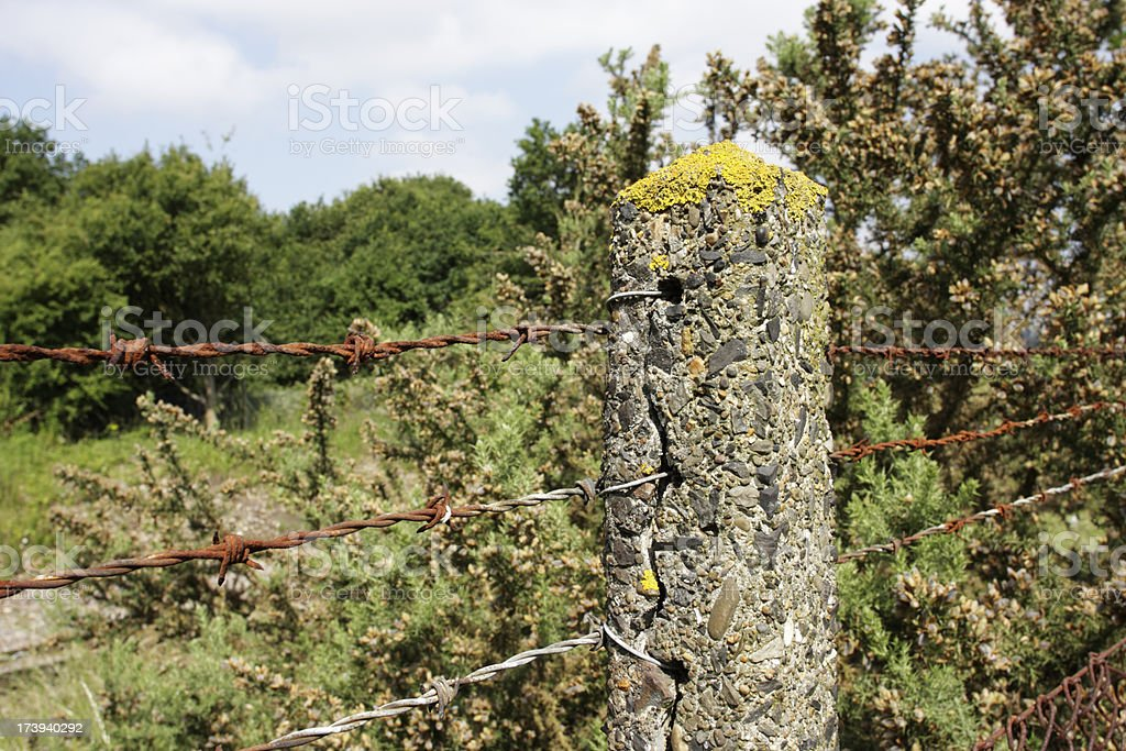 Concrete post and rusty barbed wire security beside railway track royalty-free stock photo